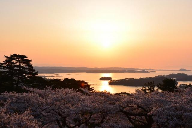 松島(松島)