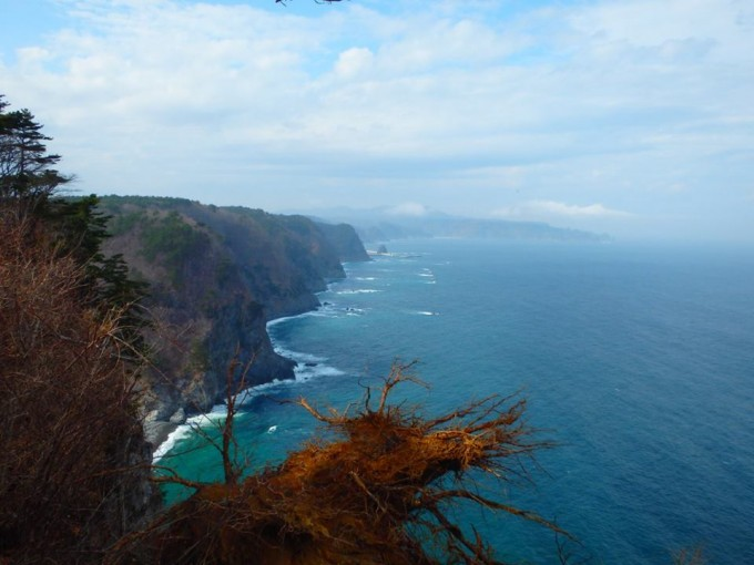 鵜の巣断崖(鵜の巣断崖展望台)