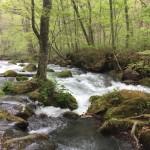 青森県の絶景スポット!奥入瀬渓流の行き方・見所まとめ