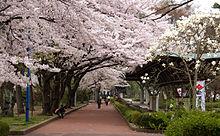 榴ヶ岡(ツツジガオカ)公園・仙台市歴史民俗資料館