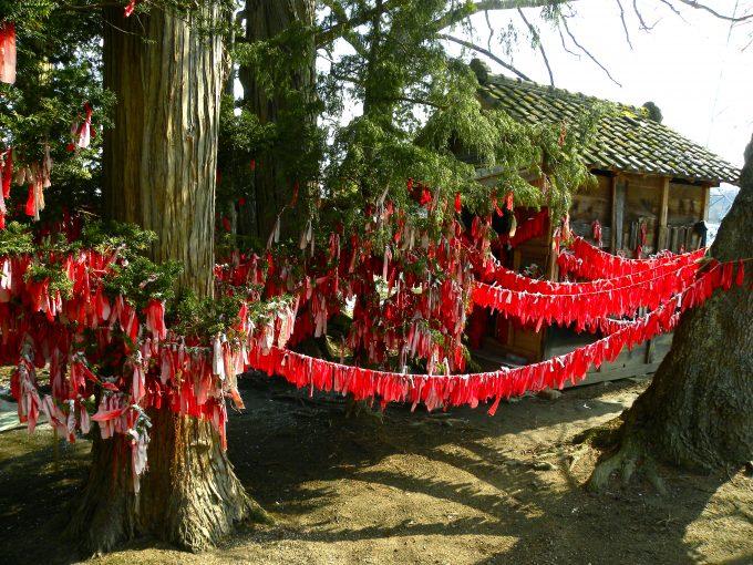 岩手 パワースポット 卯子酉神社