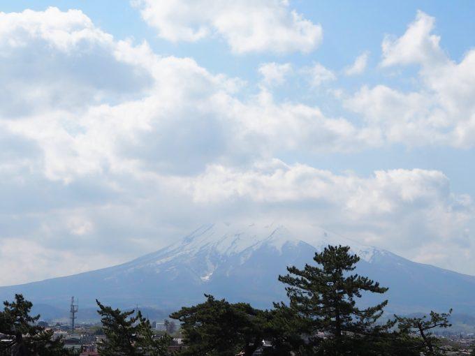 弘前公園 岩木山