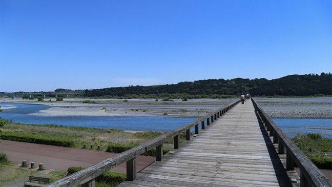 勝間田川堤2