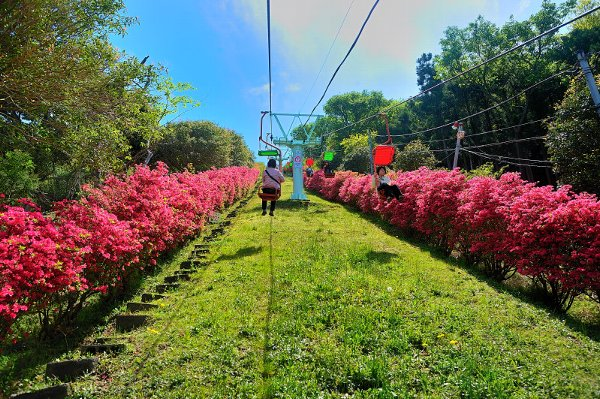 小室山公園