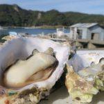 夏だって牡蠣が食べたい! 鳥羽市が断然オススメ+αで観光も楽しもう