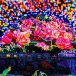 夏の思い出を増やすチャンス!静岡県で行きたい8月のイベントを厳選