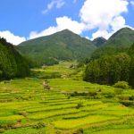 大自然と歴史に触れる奥三河の観光スポットを厳選