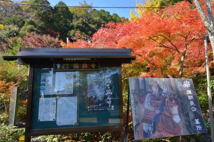 篠尾山円興寺