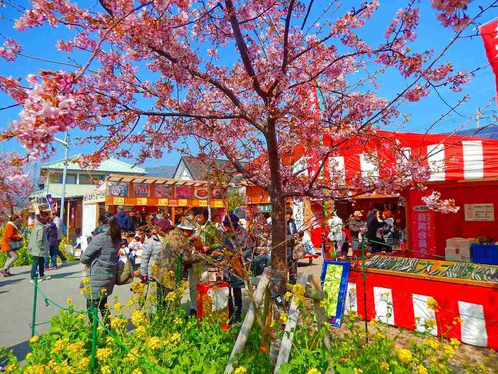 河津桜と一緒に楽しみたいグルメ