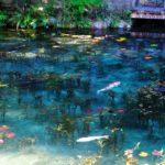 岐阜県で絶景巡り!春&夏のお出かけにピッタリなスポット10選