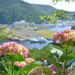 静岡県は絶景の宝庫!初夏の旅に最適な撮影スポットを厳選