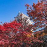 11月後半でも楽しめる!岐阜県の秋イベント10選