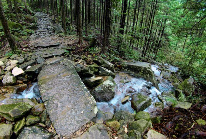 歩ける世界遺産!熊野古道伊勢路の石畳