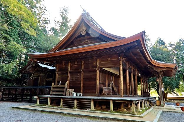 金弊八王子神社